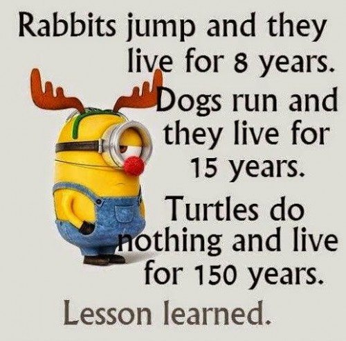 Superior Top 30 Funny Minion Quotes #Minion #Minions Quotes Great Pictures