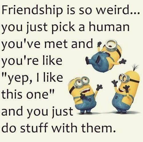 Top 30 Minions Friendship Quotes Funny Minions Memes