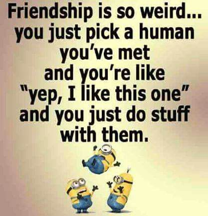 Top 30 Minions Friendship Quotes 3 #Friendship Quotes #Best ...
