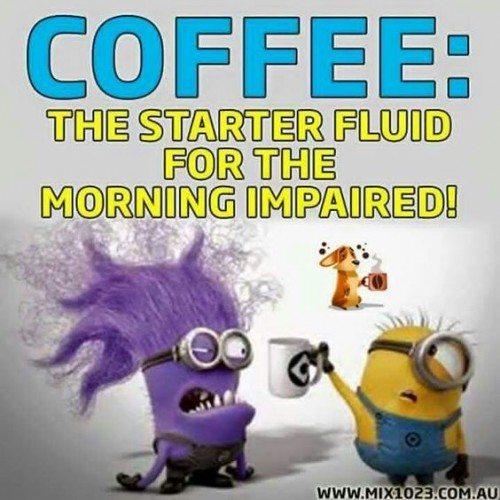 Purple Minion Memes Funny: 30 Funny Evil Minions Quotes