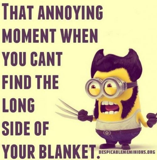 40 Funny Minions Quotes and sayings – Funny Minions Memes