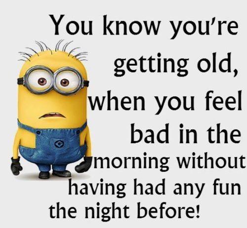 35 Hilarious Minions Memes #Memes #Minion