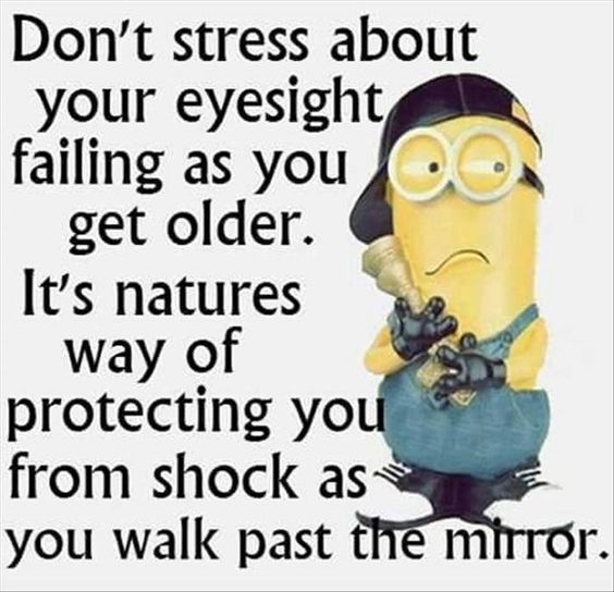 minion quotes dont go down