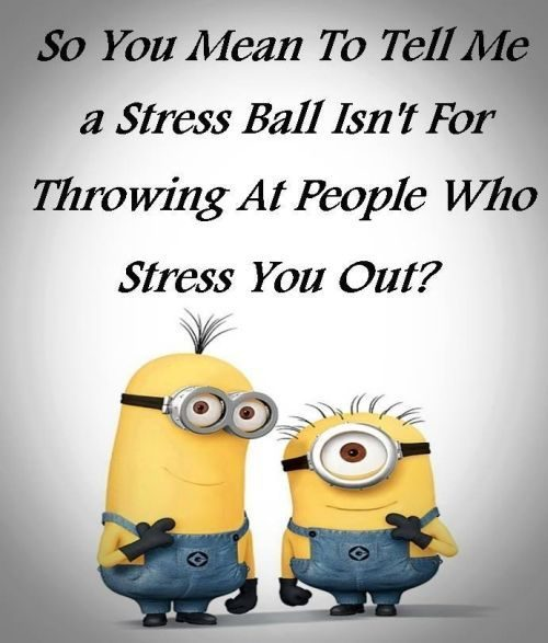 30 Funny Memes about Minions #Funny Minion #Memes