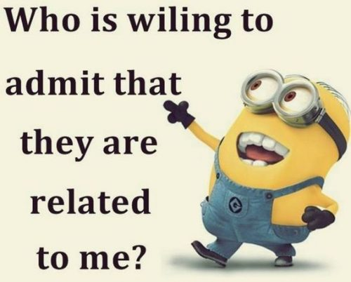 Top 25 Funny Minions Memes