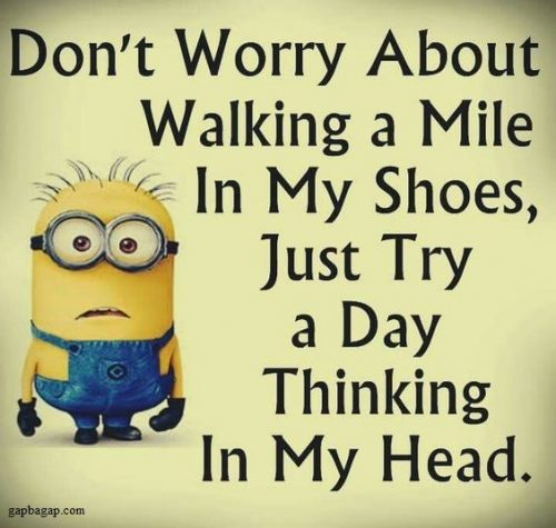 Latest 30 Funny Minions Quotes Of The Week 1 Funny Minion