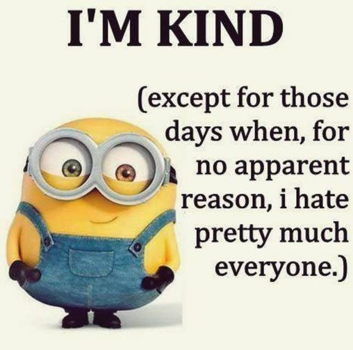 Top 25 Minion Pics With Best Captions Funny Minions Memes