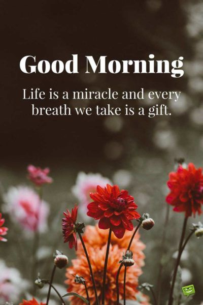 Happy Sunday Images and Quotes