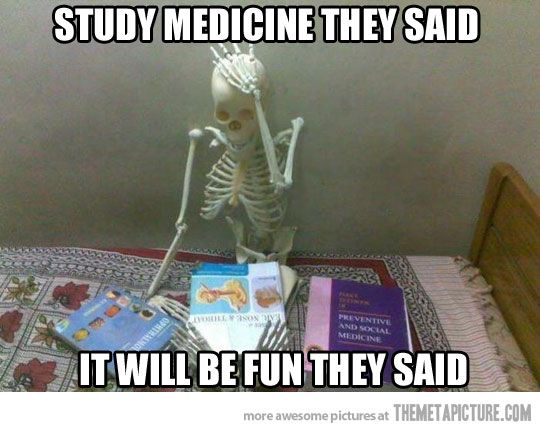 27 Funny Study Quotes