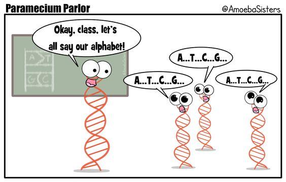 27 Biology Memes – Funny Minions Memes