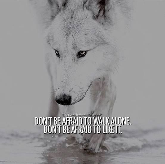 22 Lone wolf quotes12 – Funny Minions Memes