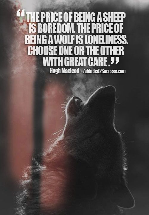 22 Lone Wolf Quotes – Funny Minions Memes