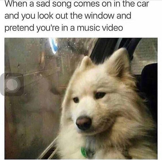 Best 32 Funny pics memes